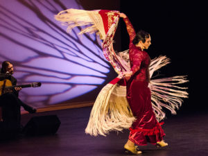 Flamenco Dance Performance